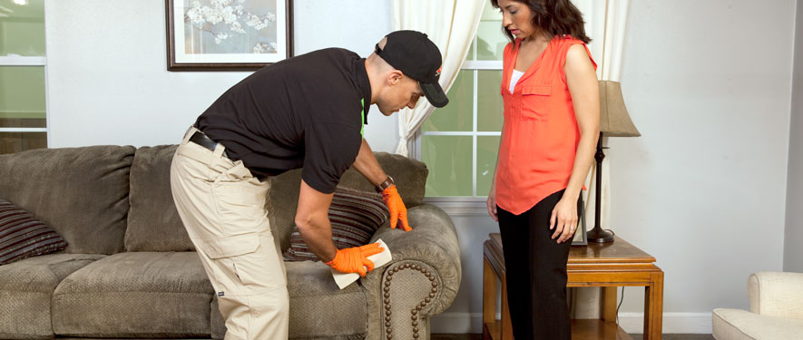 Breckenridge Hills, MO carpet upholstery cleaning
